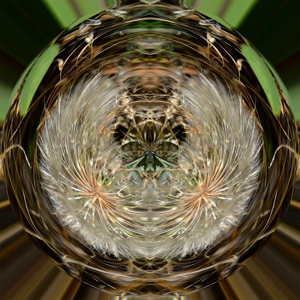Polarization 210: MEDICINE BOW
