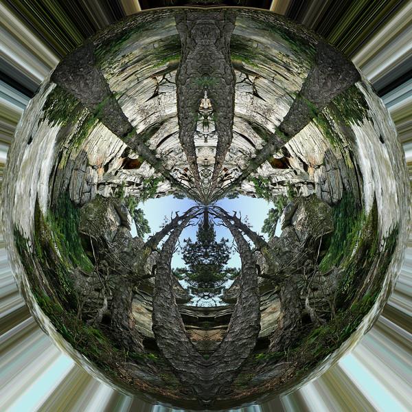 Polarization 7: MERGE XXXIIa