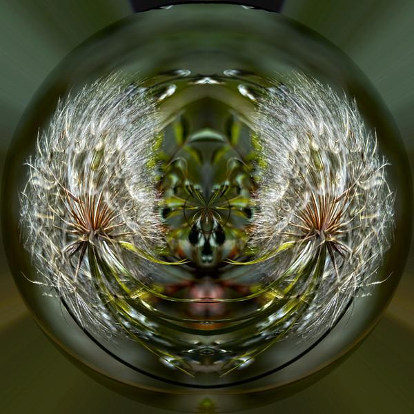 Polarization 220: MEDICINE BOW-1769b