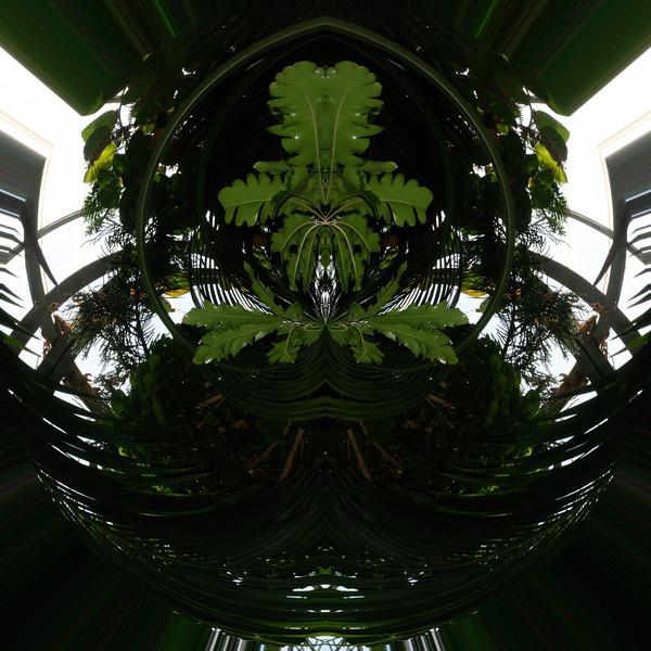 Polarization 73: KROHN 2