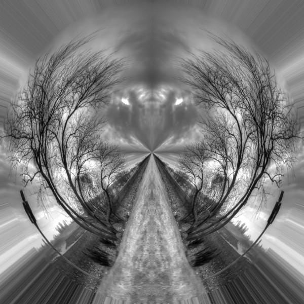 Polarization 31: DONOVAN CIRCLE 1