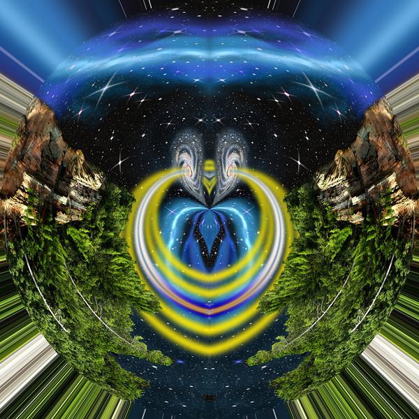 Polarization 165: COSMOS XVId