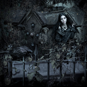The Dark Symbiosis