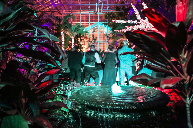 RI Weddings and Events at the Roger Williams Botanical Gardens