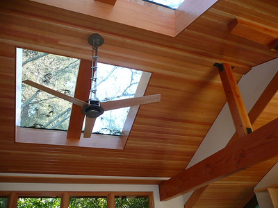 Wilson-Brito residence: ceiling detail