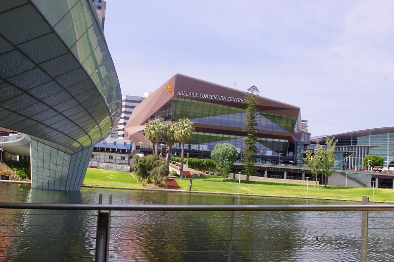 Afternoon Adelaide Highlights Tour 592