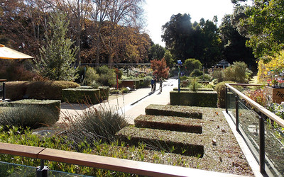 Looking over the Mediterranean Garden from the Diggers shop end.