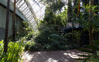 This is the largest of three glass houses in the gardens and was completed in 1989