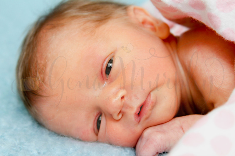 Adele Newborn 029 copy