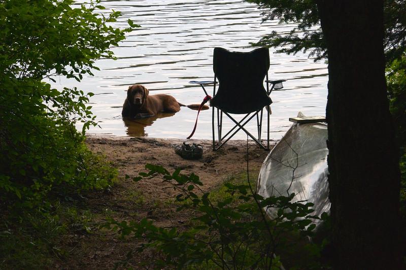Cooling off, Rollin Ponds