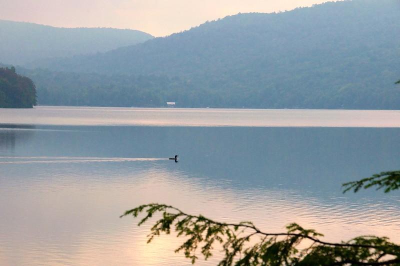 Morning Swim - Limekiln Lake