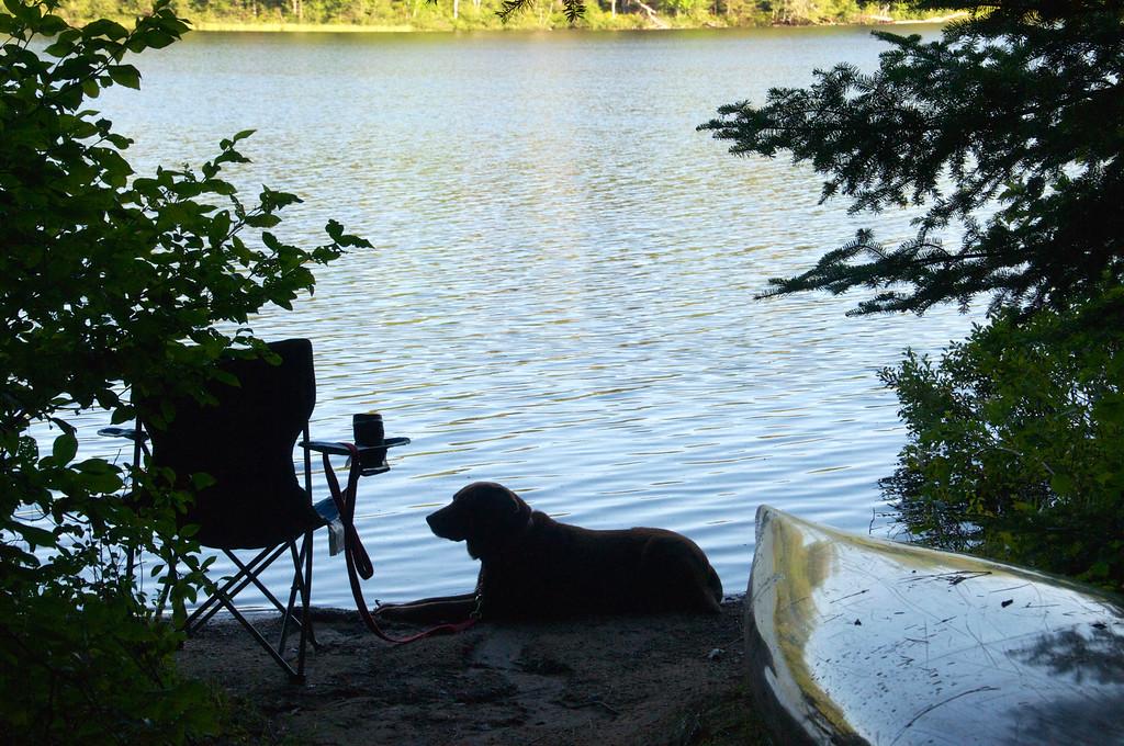 Waiting for my Swim, Rollin Ponds