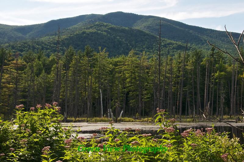 Lake Placid & High Peaks Region