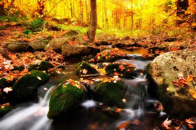 7- Narrow creek in Adirondack state Park, NY