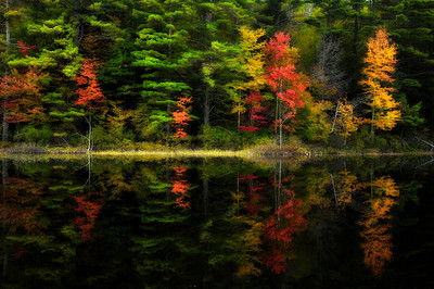 1- Colorful reflection in a small lake, Adirondacks NY