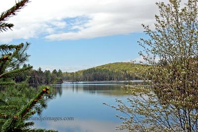 Mason Lake- Spring