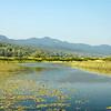 Lewey Lake