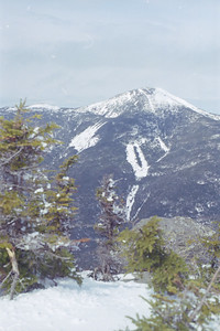 Algonquin from Colden