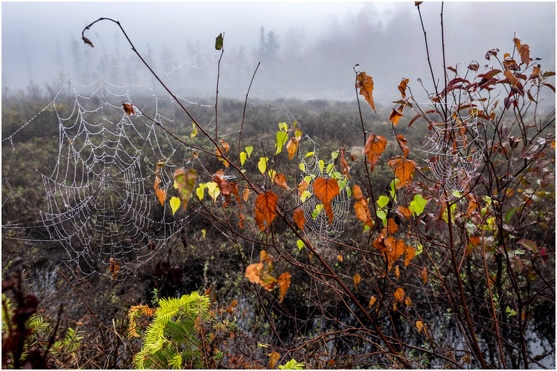 Adirondacks Cary Lake Morning Mist 35 September 2017