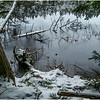 Adirondacks Follensby Clear Pond with Deadfall 5 December 2016