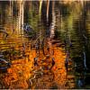 Adirondacks Utowana Lake Reflections and Dead Awwowhead 2 October 2009