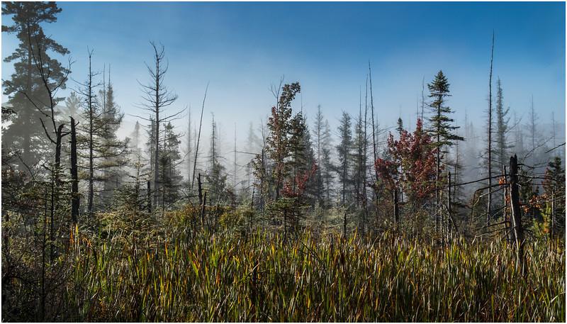Adirondacks Long Lake Roadside Mist 5 September 25 2016