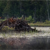 Adirondacks Little Tupper Lake July 2015 Beaver Lodge 2