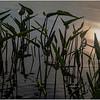 Adirondacks Lake Eaton Morning 28 July 2019