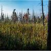 Adirondacks Long Lake Roadside Mist 3 September 25 2016