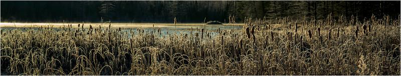 Adirondacks North Creek November 2015 Austin Pond Morning Frost 6