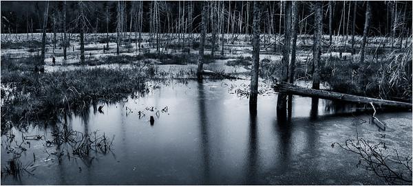 Adirondacks Lake Durant November 2015 Frozen Pond 4 DUO