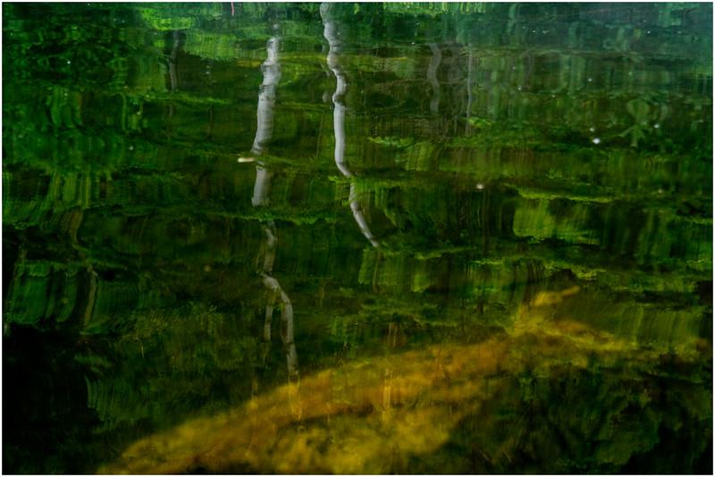 Adirondacks Chateaugay Lake Reflection 1 July 2016