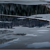 Adirondacks Saranac Lake Tributary 3 December 2016