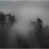 Adirondacks Tupper Lake Puddle with Reflection 1 December 2016