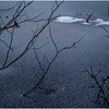 Adirondacks Indian Lake Raquette Brook Ice Over and Twigs December 2016
