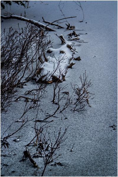 Adirondacks Lake Abenakee Backwater Frozen Surface 8 December 2016