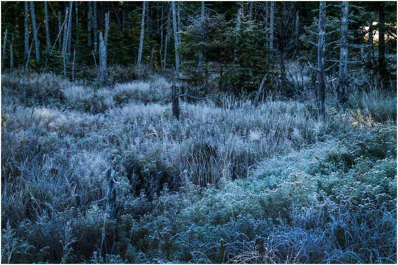 Adirondacks Long Lake Frost 5 September 25 2016