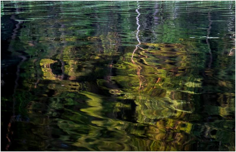 Adirondacks Forked Lake Reflection 8 July 2017