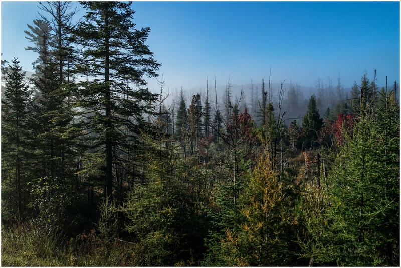 Adirondacks Long Lake Roadside Mist 1 September 25 2016