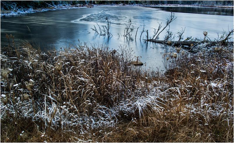Adirondacks Long Lake November 2015 Wetlands at Sabattis Road 21