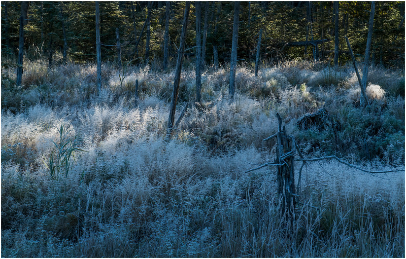 Adirondacks Long Lake Frost 7 September 25 2016