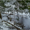 Adirondacks Follensby Clear Pond with Deadfall 6 December 2016