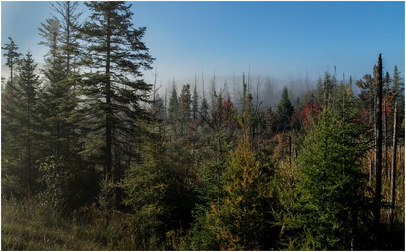 Adirondacks Long Lake Roadside Mist 2 September 25 2016