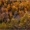Adirondacks Cascade Lakes Mosaic 1 October 2009