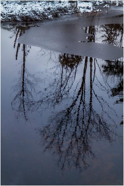 Adirondacks Saranac Lake Pond with Reflection 1 December 2016