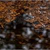 Adirondacks Long Lake Raquette River 3 December 2016