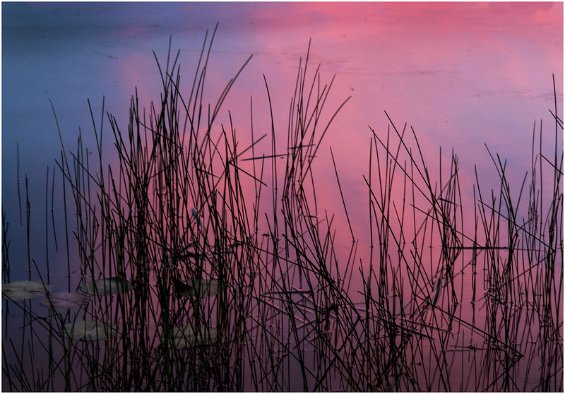 Adirondacks Chateaugay Lake Sunset from Snug Harbor Camp 4 July 2016