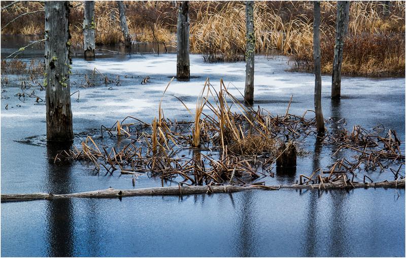 Adirondacks Lake Durant November 2015 Frozen Pond 11