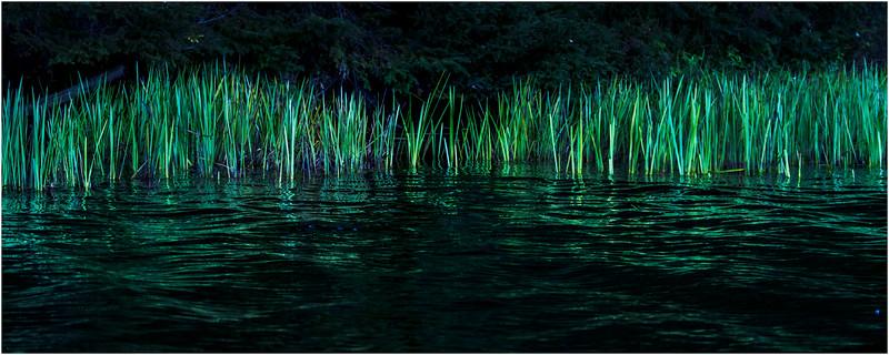 Adirondacks Cedar River Flow Reeds 6 September 24 2016