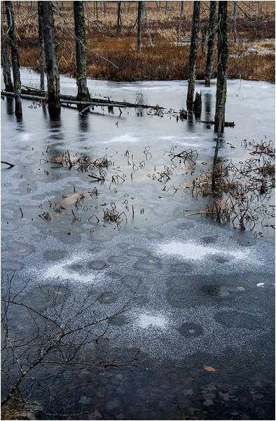 Adirondacks Lake Durant November 2015 Frozen Pond 2